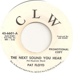 CLW 6601 - Floyd, Pat - The Next Sound You Hear DJ
