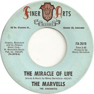 Finer Arts 2019 - Marvels - The Miracle of Life