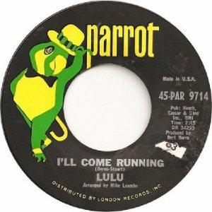 lulu-ill-come-running-parrot[1]