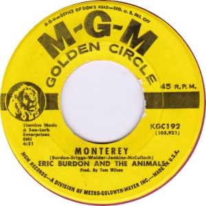 ANIMALS - MONTERY DJ