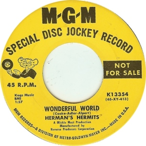 HERMAN'S - WONDERFUL WORLD DJ