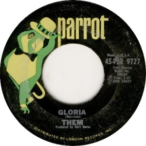 them-gloria-parrot