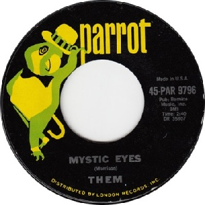 them-mystic-eyes-parrot