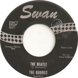 buddies-the-beatle-swan