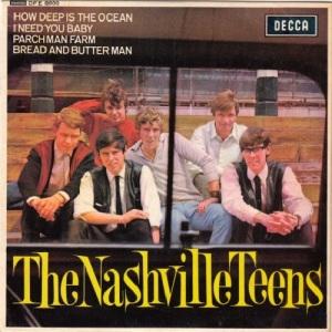 the-nashville-teens-i-need-you-baby-decca