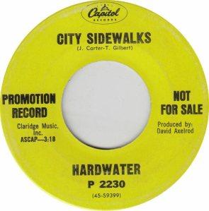 CAPITOL 2230 DJ - HARDWATER - ADD (2)