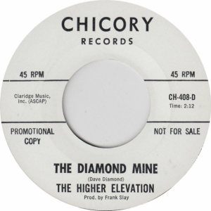 CHICORY 408 DJ - HIGHER ELEVATION (2)