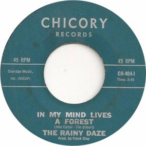 Rainy Daze - Chicory 404 - 66 B