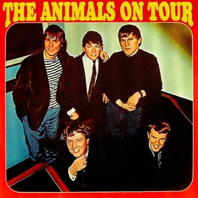 ANIMALS 02 3-65