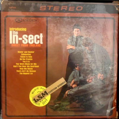 In-Sect - RCA Camden - Introducing the In-Sect