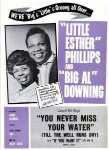 Phillips & Downing - 04-63 - You Never Miss Your Water