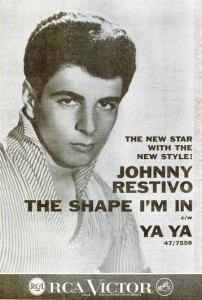 Restivo, Johnny - 07-59 - The Shape I'm In