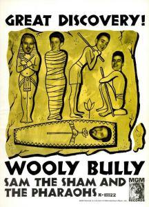 Sam the Sham & Pharoahs - 04-65 - Wooly Bully