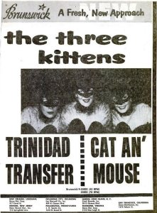 Three Kittens - 03-57 - Cat Man