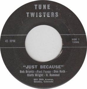 Tune Twister 15582 a
