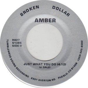AMBER - BROKEN DOLLAR 827 _0001