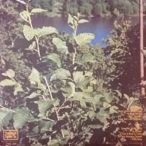 COLLINS ALBERT - TUMBLEWEED LP B