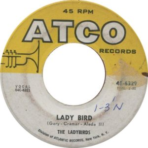 LADYBIRDS - 64 B