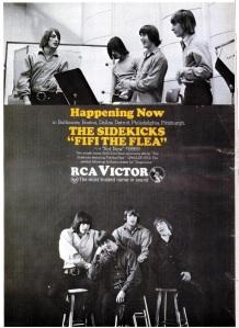 Sidekicks - 10-66 - Fifi the Flea