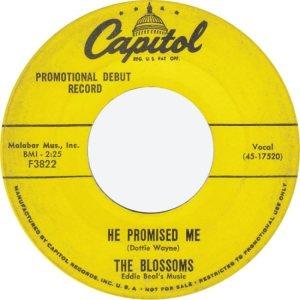 BLOSSOMS - 57 C