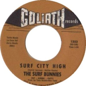 SURF BUNNIES 63 AA