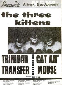 Three Kittens - 03-57 - Cat Man