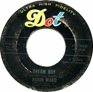 WARD ROBIN DOT 63 B