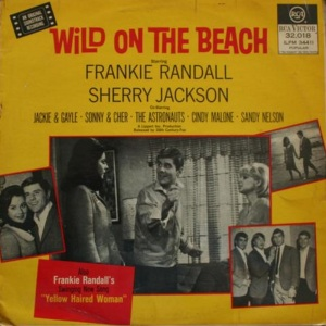 ASTRONAUTS - WILD ON BEACH LP