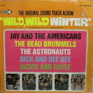 ASTRONAUTS - WILD WILD WINTER LP