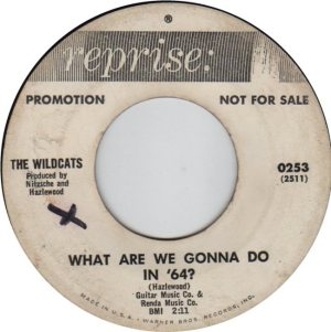 WILDCATS 64 REP A