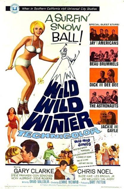 ASTRONAUTS - WILD WILD WINTER POSTER
