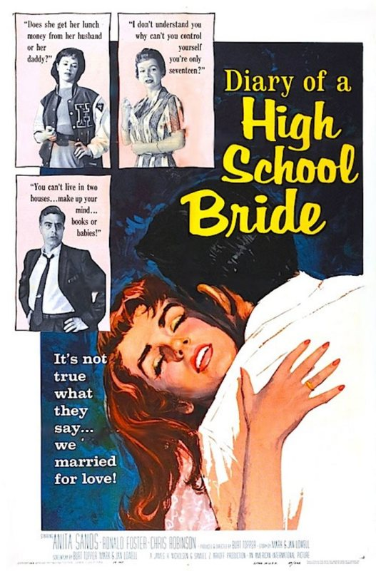 DIARY OF HIGH SCHOOL BRIDE 59 W TONY CASANOVA