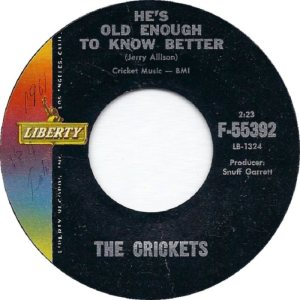 1961 45 - CRICKETS LIBERTY 55392 C