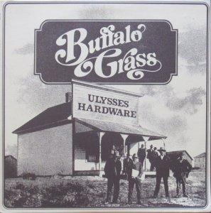 BUFFALO GRASS - ASPEN 1301 A (3)