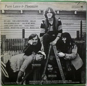 PURE LOVE PLEASURE 1970 B