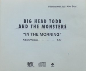 BIG HEAD TODD - SINGLE 7134 A