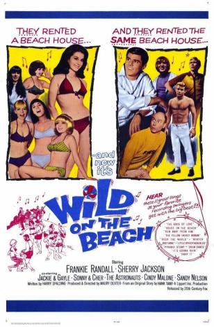 ASTRONAUTS WILD ON THE BEACH POSTER 03