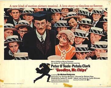 PET CLARK 11