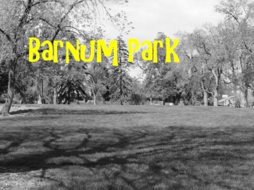 WS BARNUN PARK