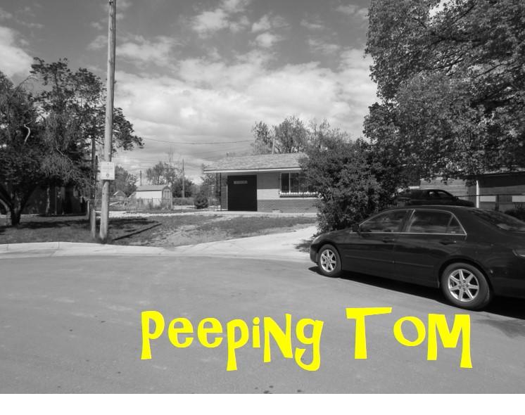 WS PEEPING