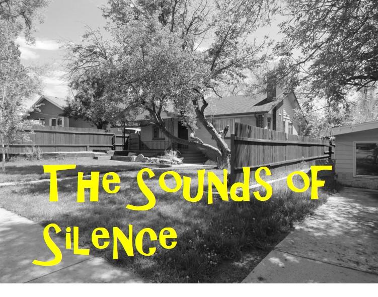 WS SILENCE
