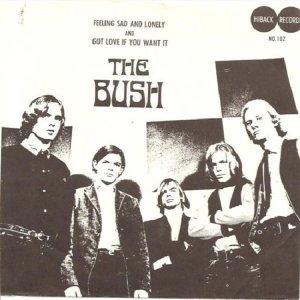 BUSH 66
