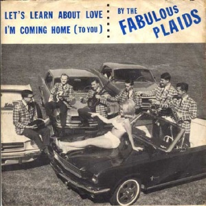 FABULOUS PLAIDS 65 A