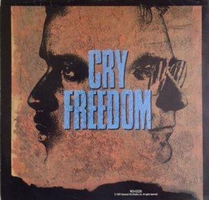 cry-freedom-mov-87