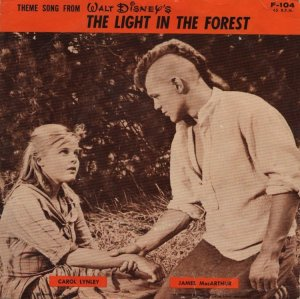 light-in-forest-mov-58