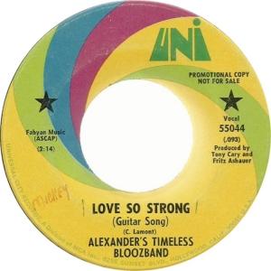 alexanders-timeless-bloozband-67