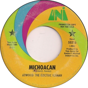 atwood-electric-iceman-70