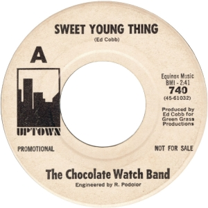 chocolate-watch-band-67
