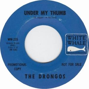 drongos-66