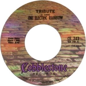 electric-rainbow-69